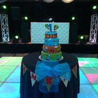 Wedding Party Hire Celebrations Disco Floors LEDs